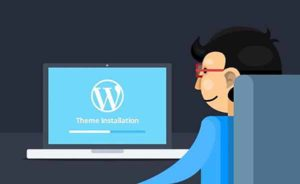 Installing Your New Adult WordPress Tube Theme