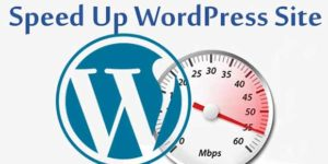 Here Are The 3 Simple Ways To Speed Up Your Adult WordPress Site